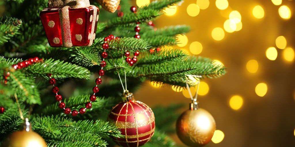 Vente de sapins de Noël par nos scouts